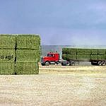 USA - High density fodder bales